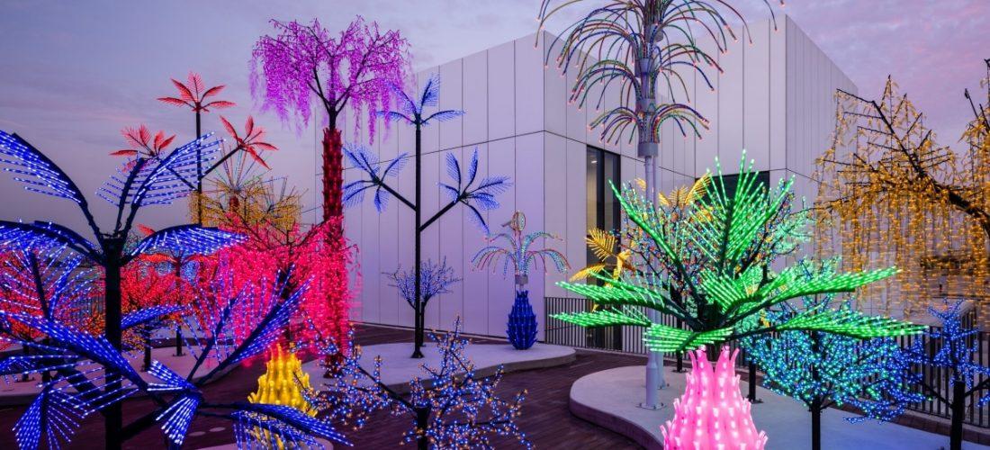 حياة معاكسة: حديقة نباتية مضيئة مخصصة للأشجار