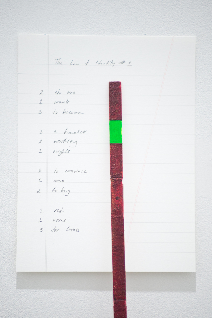 Sreshta Rit Premnath , The Law of Identity (detail of #1), 2017, Rose pigment, Chroma key paint, ruler, pencil on paper, 22.8 x 30.5 x 182.8 cm. Courtesy of the artist. Art Jameel Collection